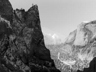 Photography by Danny Kaufmann